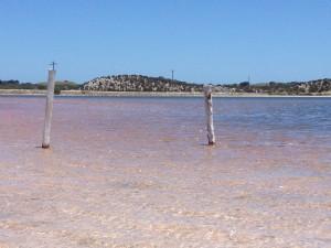 Pink salt lakes on Rottnest