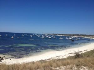 Australia Day at Narrow Neck... busy!